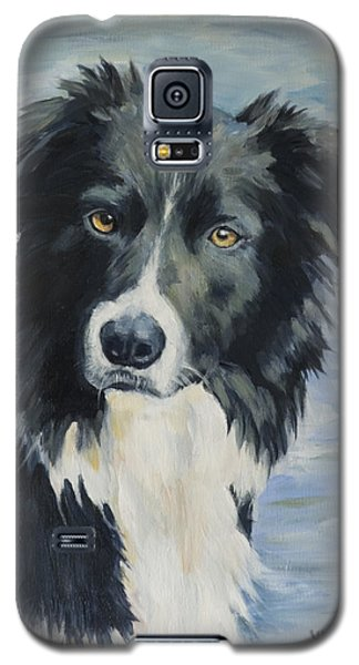 Border Collie Portrait Galaxy S5 Case