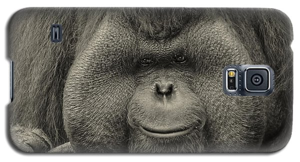 Bornean Orangutan II Galaxy S5 Case by Lourry Legarde