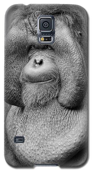 Bornean Orangutan IIi Galaxy S5 Case by Lourry Legarde