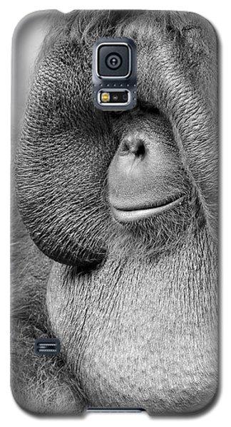 Bornean Orangutan V Galaxy S5 Case by Lourry Legarde