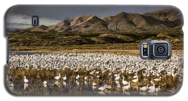 Bosque Del Apache Galaxy S5 Case