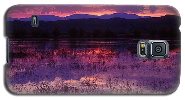 Bosque Sunset - Purple Galaxy S5 Case