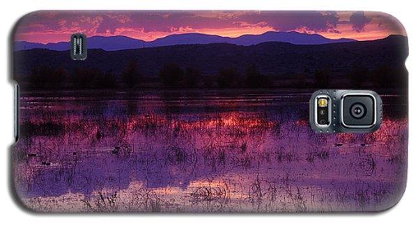 Bosque Sunset - Purple Galaxy S5 Case