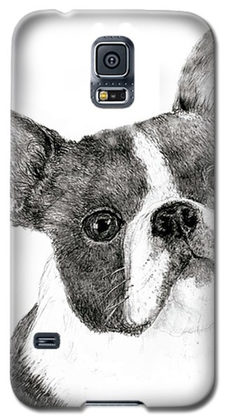 Galaxy S5 Case featuring the drawing Boston Terrier by Jim Hubbard