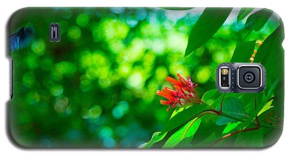 Botanical Garden Butterfly Galaxy S5 Case