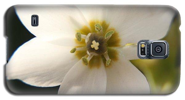 Botanical Purity Galaxy S5 Case