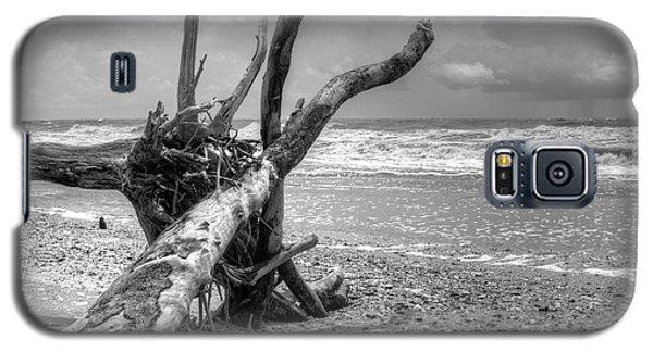 Botany Bay Galaxy S5 Case