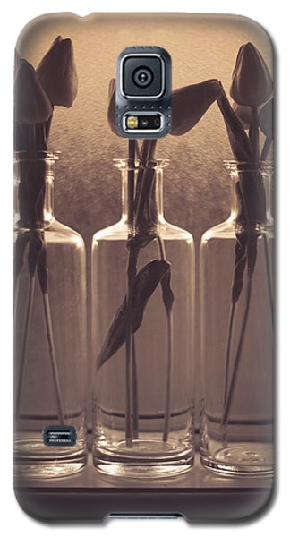Bottled Love Full - North  Galaxy S5 Case