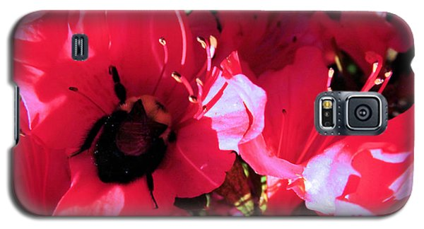 Galaxy S5 Case featuring the photograph Bottoms Up by Robyn King
