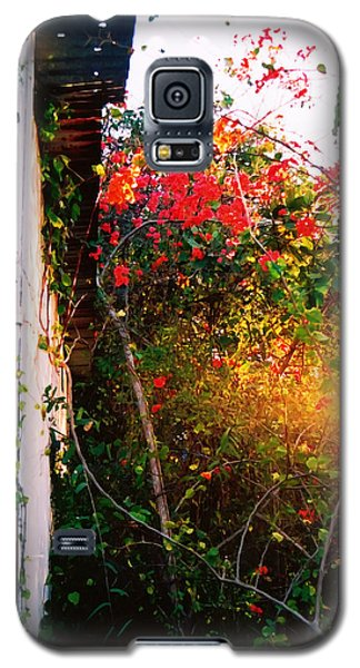 Galaxy S5 Case featuring the digital art Bougainvilla  by Kara  Stewart