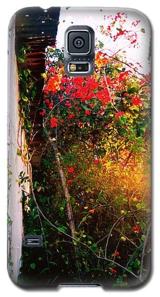 Bougainvilla  Galaxy S5 Case