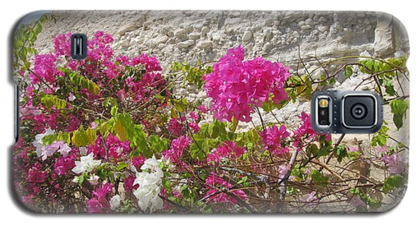 Bougainvillea At The Dead Sea Galaxy S5 Case
