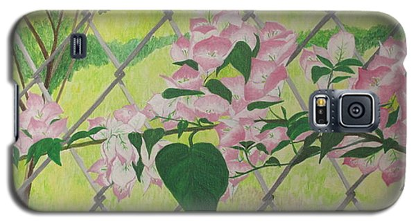 Bougainvillea Near Fence Galaxy S5 Case by Hilda and Jose Garrancho