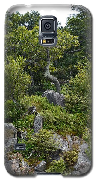 Galaxy S5 Case featuring the photograph Boulder Green by Cathy Shiflett