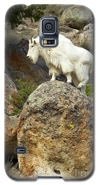 Bouldering Galaxy S5 Case by Aaron Whittemore