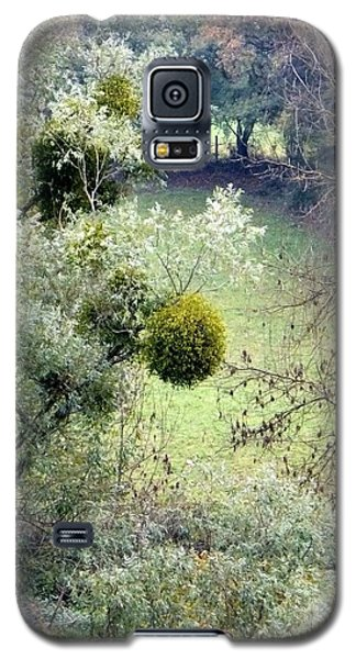 Mistletoe Ball Galaxy S5 Case by Marc Philippe Joly