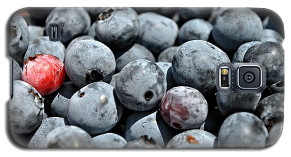 Galaxy S5 Case featuring the photograph Bountiful Blueberries by Kelly Nowak