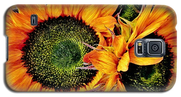 Bouquet Of Sunflowers Galaxy S5 Case