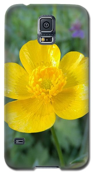 Bouton D'or Galaxy S5 Case