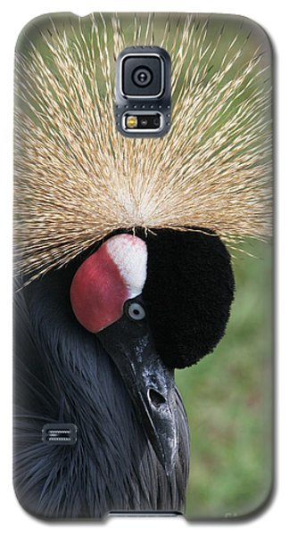 Bow Your Head Galaxy S5 Case by Judy Whitton