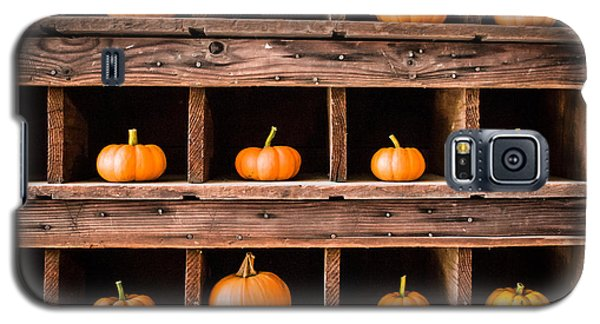 Boxed In Pumpkins Galaxy S5 Case by Dawn Romine