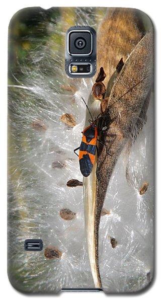 Boxelder On Butterfly Milkweed 2 Galaxy S5 Case by Sara  Raber