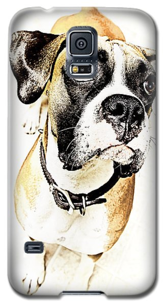 Galaxy S5 Case featuring the photograph Boxer Dog Poster by Peter v Quenter