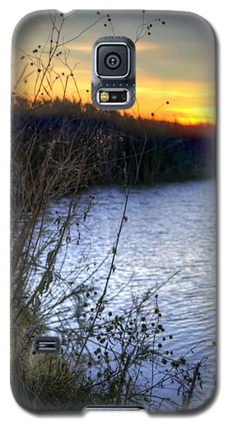 Bramble Pond Galaxy S5 Case
