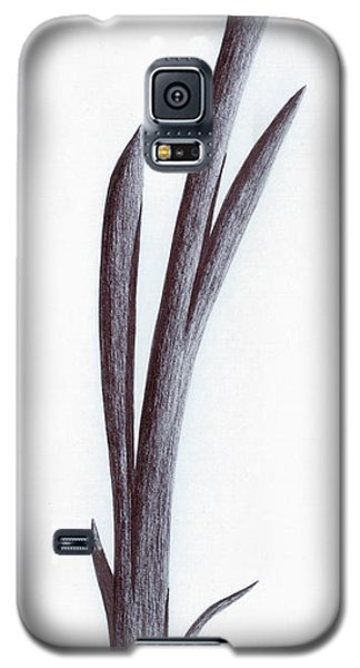 Galaxy S5 Case featuring the photograph Branch Of A Fragment Of Life by Giuseppe Epifani
