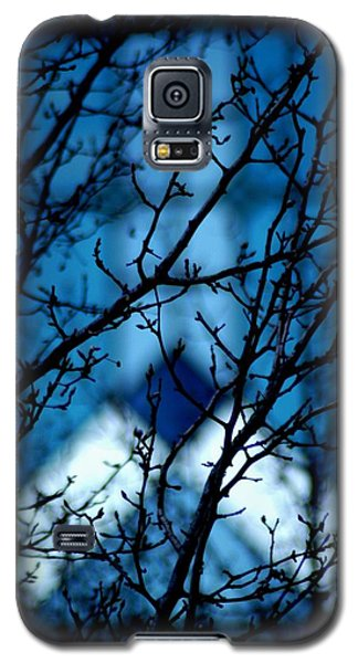 Branch Office Galaxy S5 Case by Joseph Yarbrough