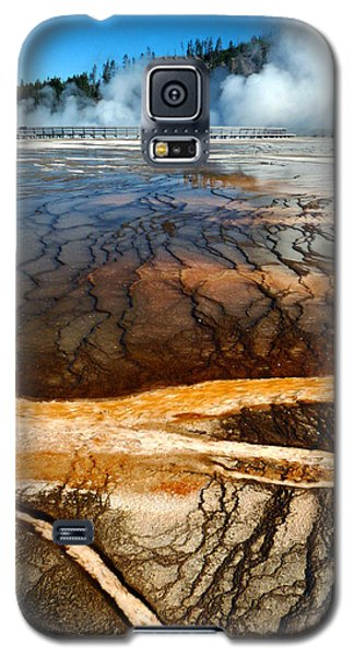 Branches Of Life Galaxy S5 Case