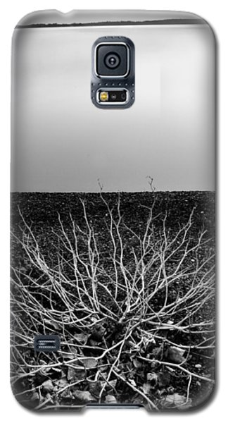 Branching Out Galaxy S5 Case