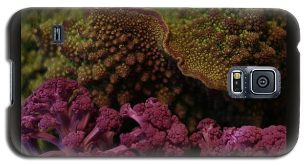 Galaxy S5 Case featuring the photograph Brassica Landscape by Patricia Overmoyer