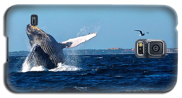 Breaching Whale Galaxy S5 Case