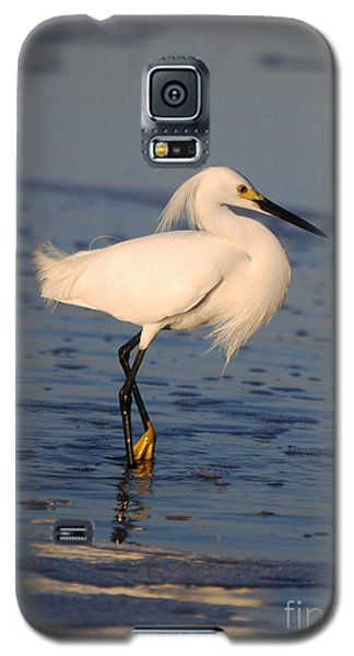 Galaxy S5 Case featuring the photograph Breakfast Companion by Linda Mesibov