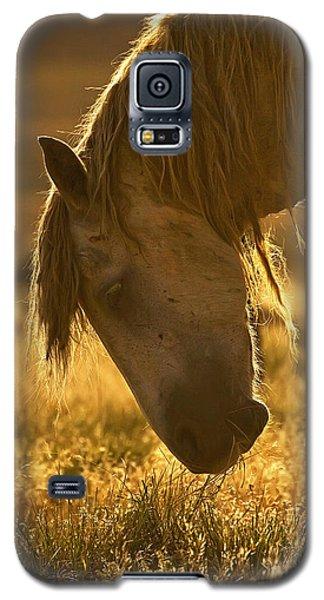 Breakfast - Signed Galaxy S5 Case