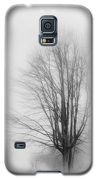 Breaking Through Galaxy S5 Case by Greg Jackson
