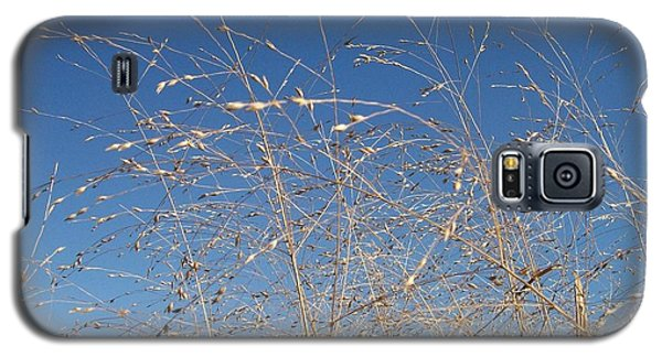 Galaxy S5 Case featuring the photograph Breeze by Sara  Raber