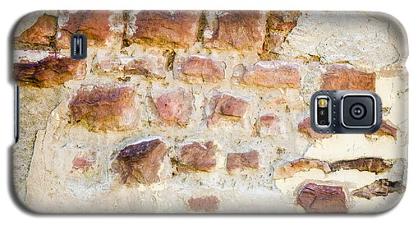 Bricks And Mortar Galaxy S5 Case