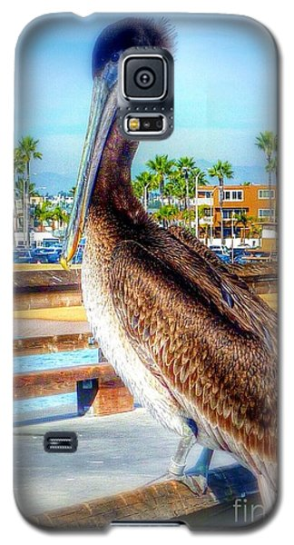 Brief Pelican Encounter  Galaxy S5 Case
