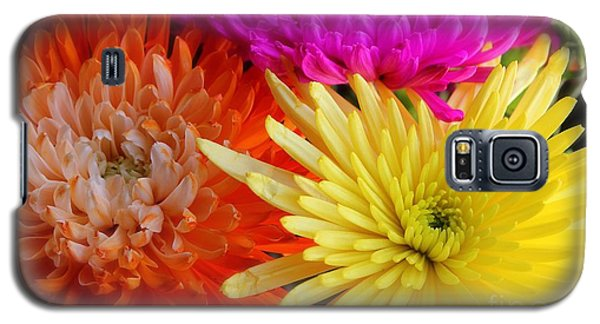 Bright Chrysanthemums Galaxy S5 Case