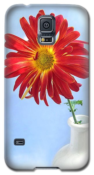 Bright Day Daisy Galaxy S5 Case by Louise Kumpf