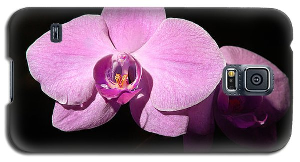 Bright Orchid Galaxy S5 Case