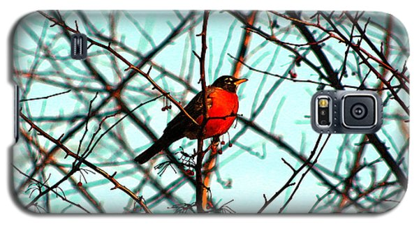 Bright Red Robin Galaxy S5 Case