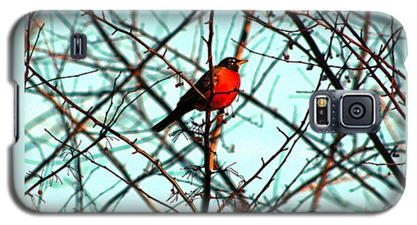 Bright Red Robin Galaxy S5 Case