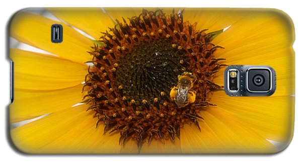 Galaxy S5 Case featuring the photograph Vibrant Bright Yellow Sunflower With Honey Bee  by Jerry Cowart