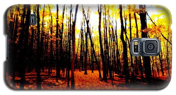 Bright Woods Galaxy S5 Case