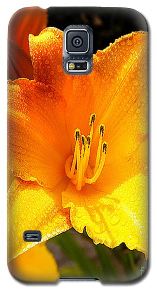 Bright Yellow Daylily Flower Galaxy S5 Case