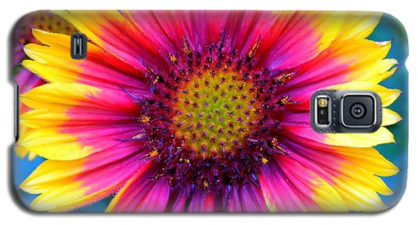 Galaxy S5 Case featuring the photograph Brilliance by Deena Stoddard