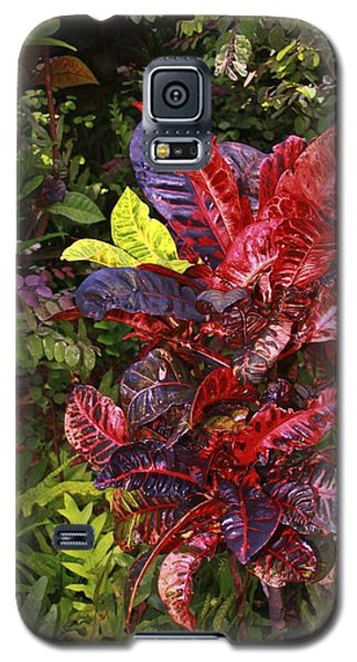 Brilliant Colors Of Leaves Galaxy S5 Case